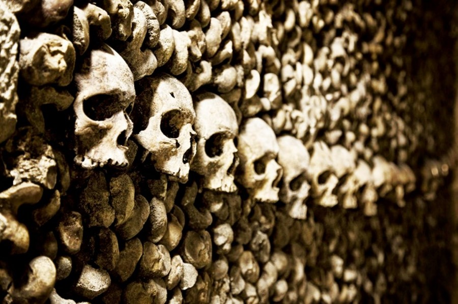 The Paris Catacombs, skulls