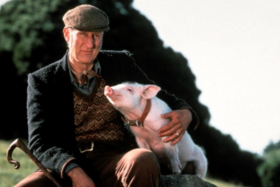 "Still from ""Babe"""