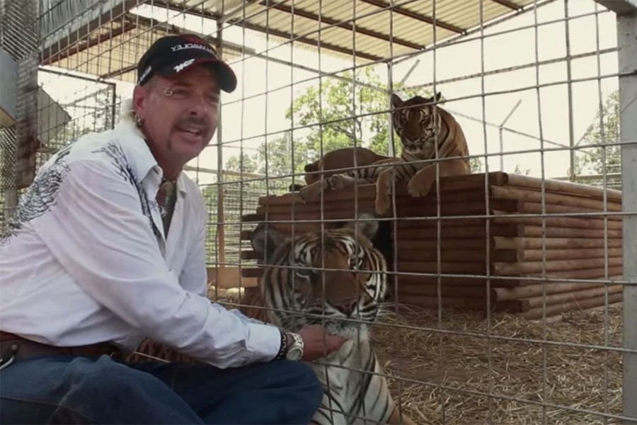 USA  judge orders Tiger King zoo to surrender big cats